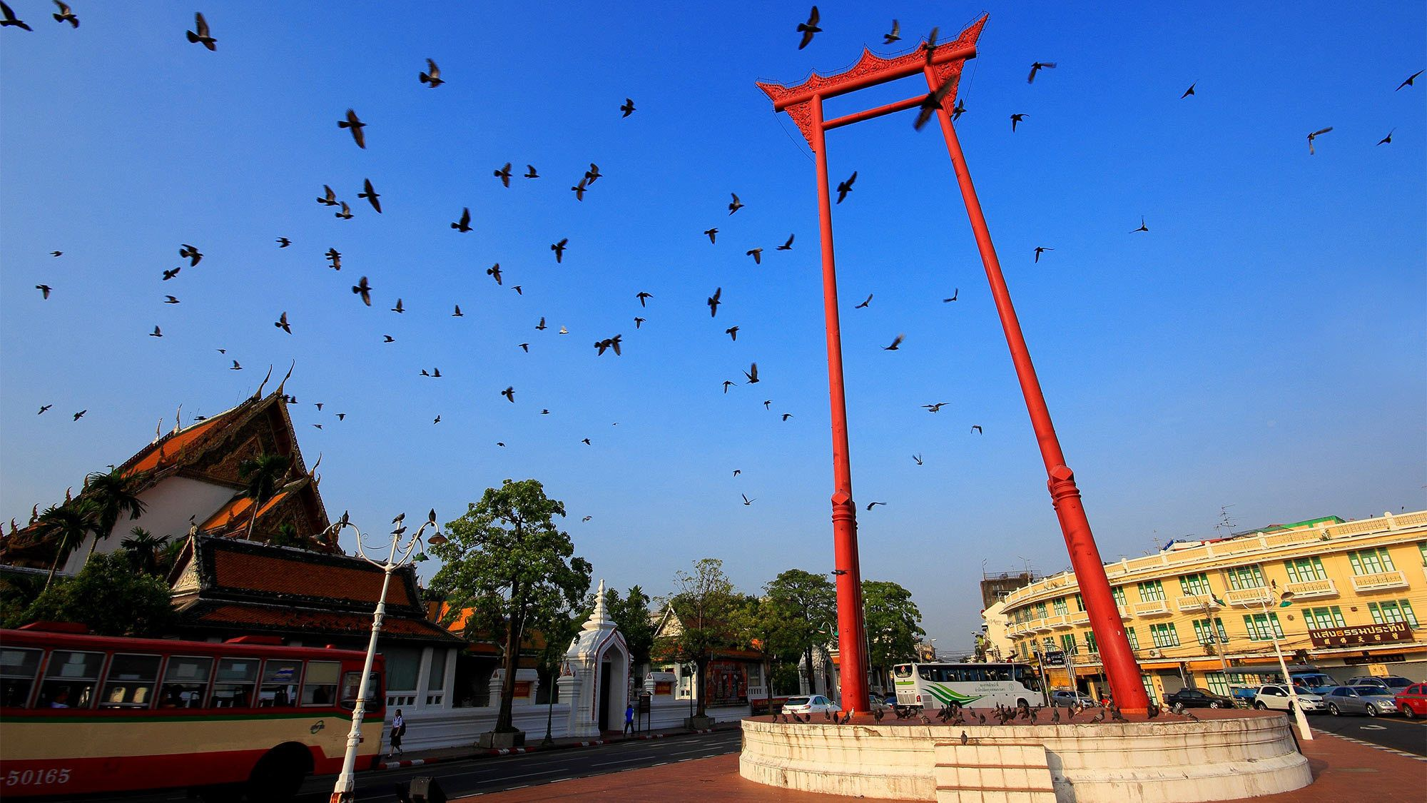 Birds flying over Siam