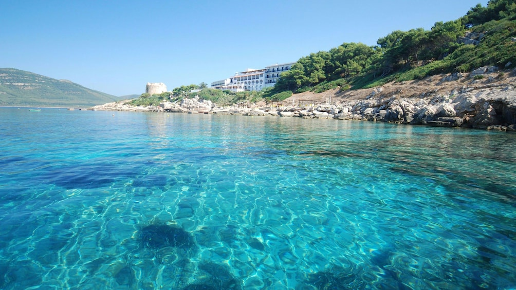 Show item 8 of 8. Crystal clear water in Alghero