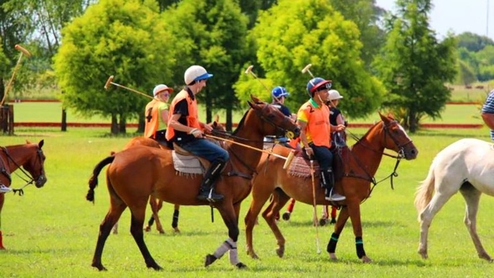 Full-Day Polo Experience with Exhibition Match & Lessons