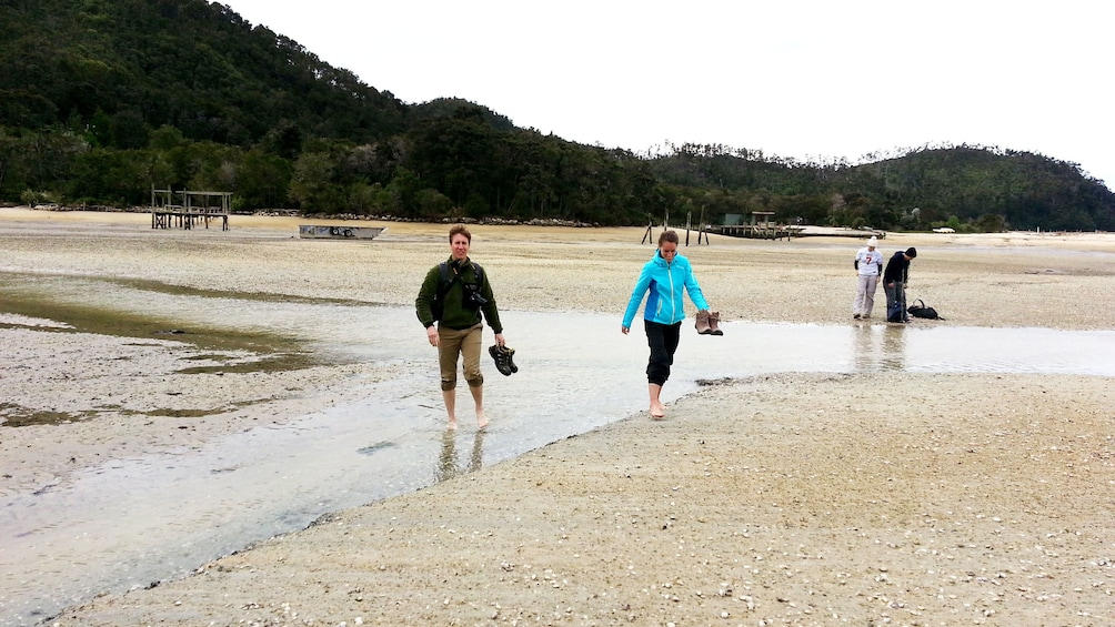 Show item 2 of 5. Hikers walking across wide beach on Abel Tasman Hiking Tour