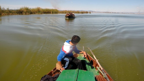 View from a boat on the Albufera in Valencia