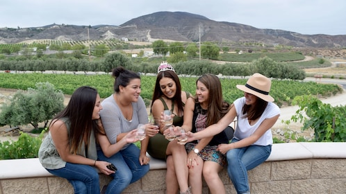Group celebrating a birthday at a Wine Tour in Orange County, CA