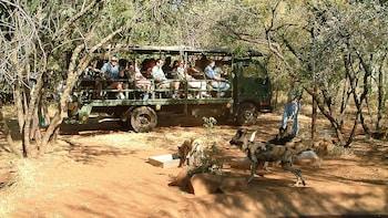 Geführte Halbtagestour durch das De Wildt Cheetah and Wildlife Centre