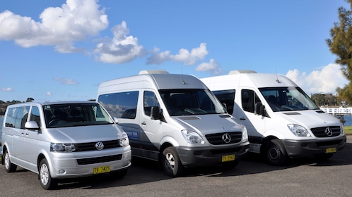 Row of parked tour vans in Blue Mountains