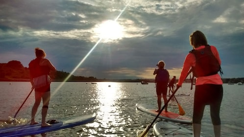 Stand up paddling group on the water as the sun goes down in Portland