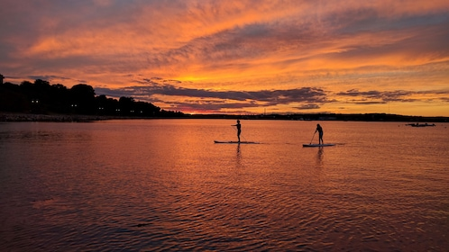SIlhouette of people on stand up paddle boards at sunset in Portland