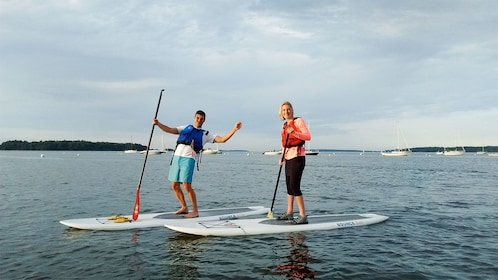 Tourists on the Stand-Up Paddleboard activity in Portland, ME