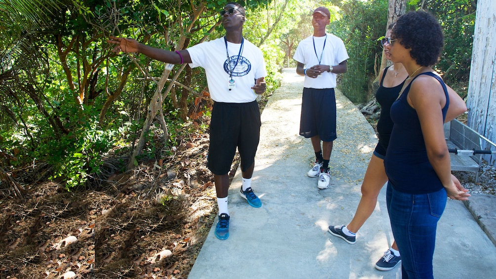 Show item 5 of 5. Tour guide talking during hike in Grand Bahamas