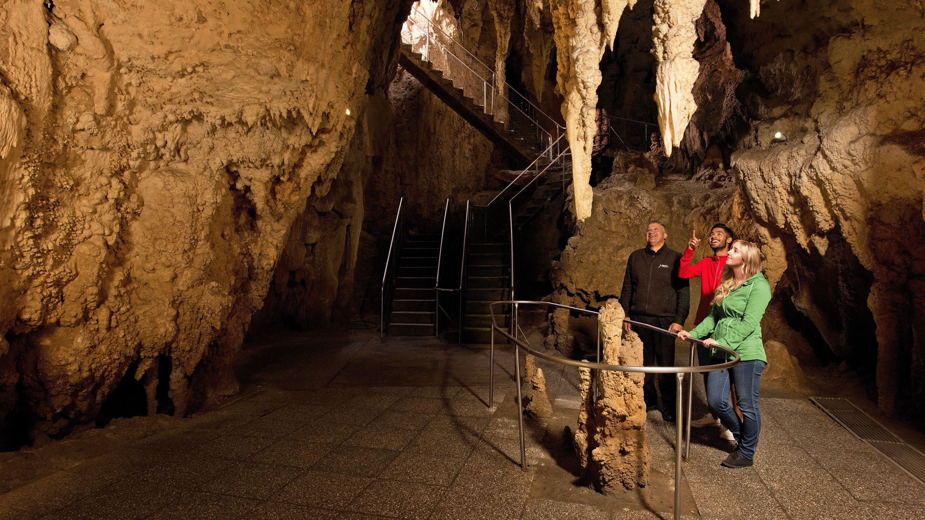 Group looking at stalactites in the Waitomo caves in New Zealand