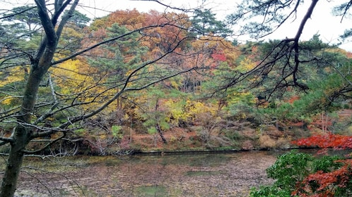 River view in Japan