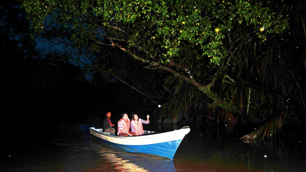 Show item 1 of 4. Boat in the Philippines looking for Fireflys