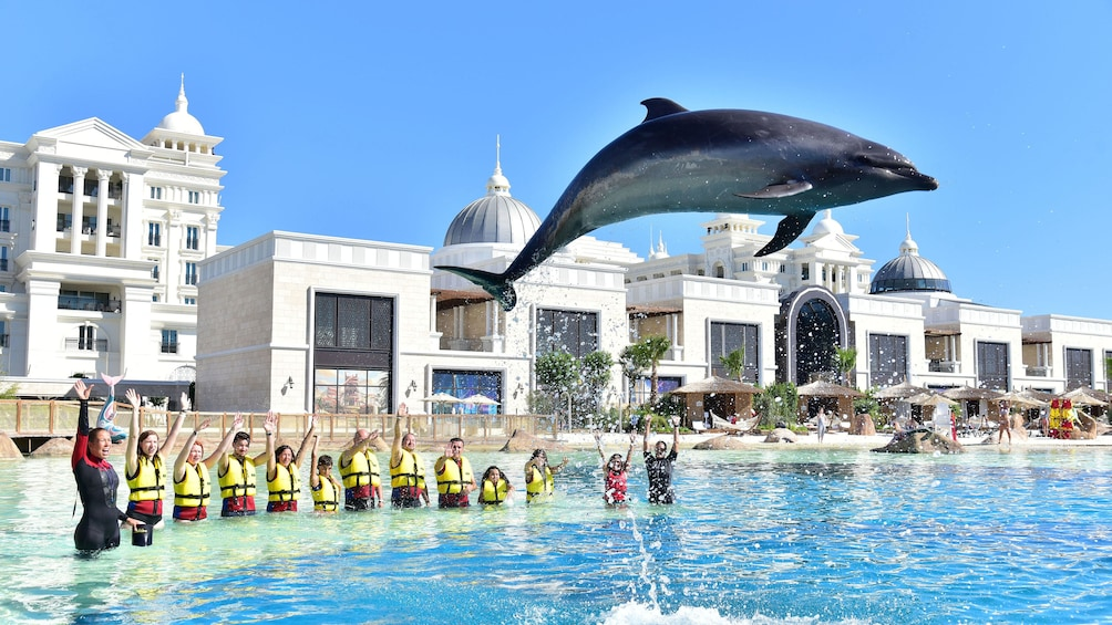 Apri foto 2 di 10. Dolphin jumping in front of tourists at Land of Legends theme park in Antalya