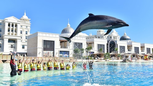 Dolphin jumping in front of tourists at Land of Legends theme park in Antalya