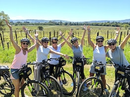 Food & Wine Sonoma Bike Tour with Gourmet Picnic Lunch