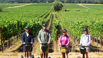 Food & Wine Segway Tour of Sonoma w/ a Gourmet Picnic Lunch