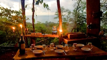 Jungle Hike & Overnight Experience