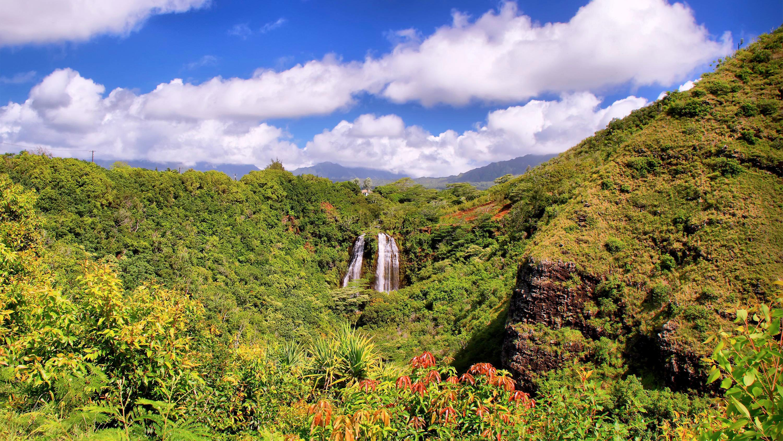 Shore Excursion: Kauai Film Location Tour