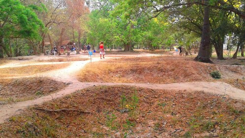 The Cambodian Killing Fields
