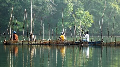 Boats on a river in Sri Lanka