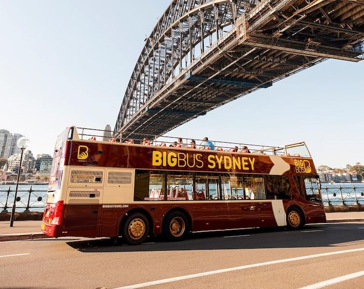 Carregar foto 1 de 8. Sydney Hop-On Hop-Off Big Bus Tour