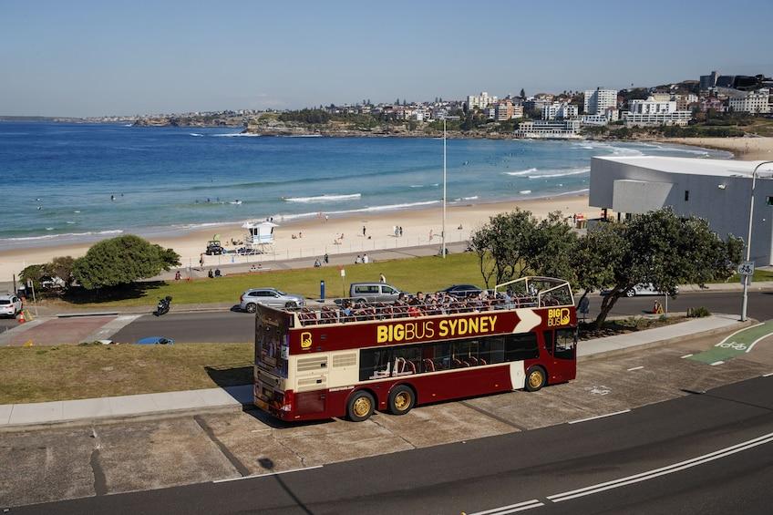 Sydney Hop-On Hop-Off Big Bus Tour