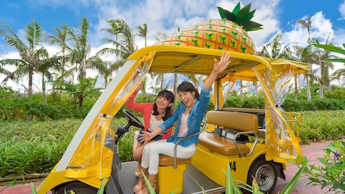 Pair of women in a pineapple-themed car in Okinawa