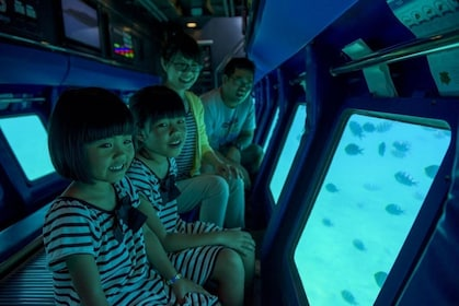 Bus Tour with Okinawa Churaumi Aquarium & Manza Submarine Jr