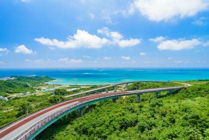 Bus Tour with Sefa Utaki, Okinawa World & Kingdom Village