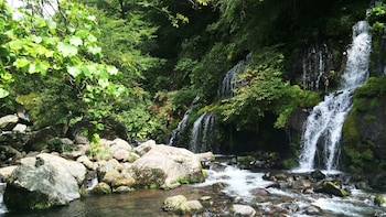 Private Full-Day Doryu Falls & Sake Brewery Tour with Shopping