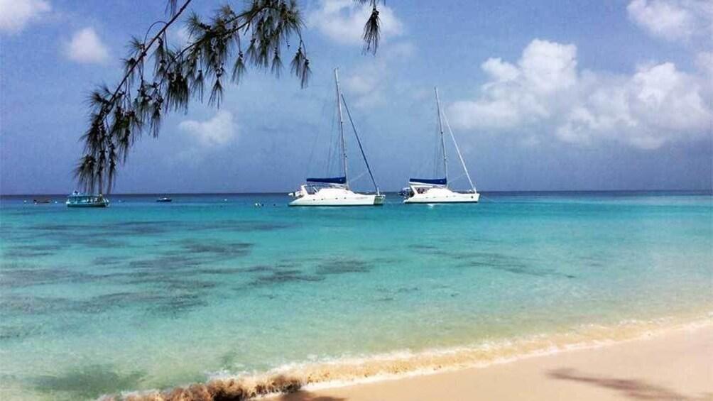 Sailing Cruises in Barbados