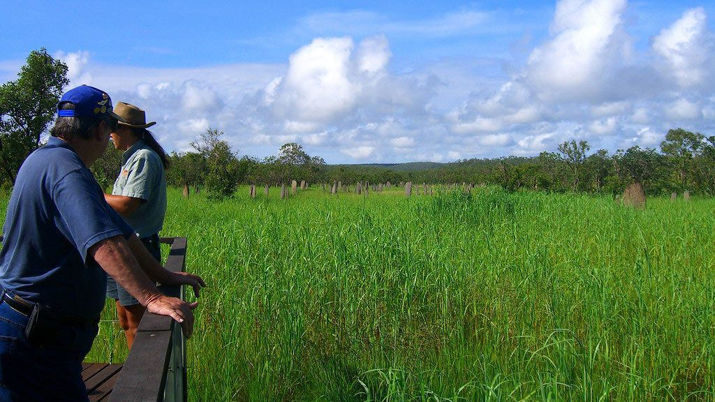 People looking out over grasslands in Litchfield National Park