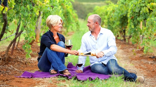 A couple drinking wine in a vineyard