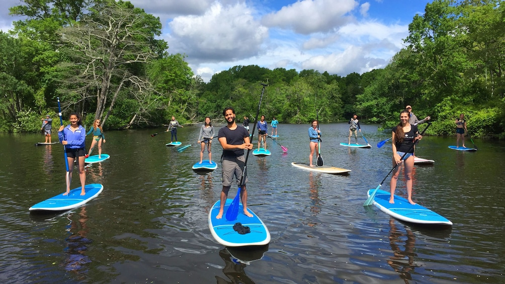 Show item 6 of 6. Paddle boarding group