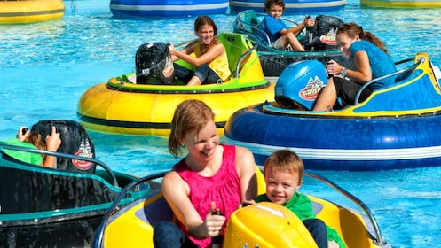 Children and adults in bumper boats