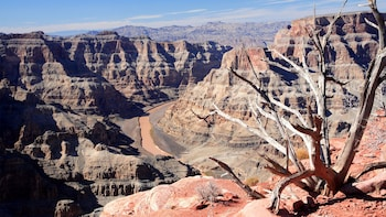 Grand Canyon West Rim Tour with Optional Skywalk Admission