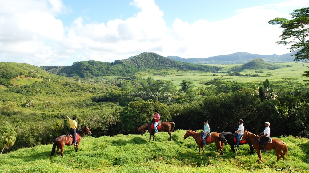 Charger l'élément 2 sur 5. Horse riding tour looking at view in Mauritius