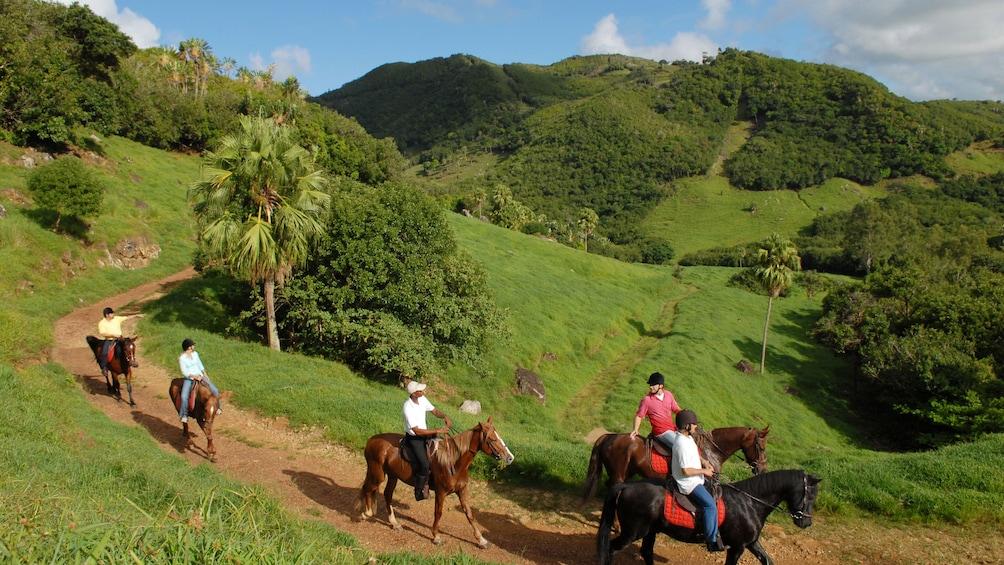 Charger l'élément 4 sur 5. Group follows tour guide on horseback down trail in Mauritius