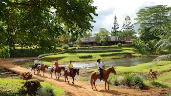 Small-Group Guided Horseback Ride in Domaine de L'Etoile