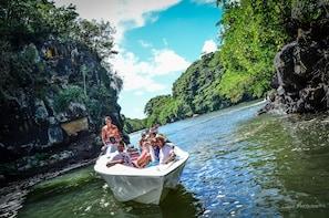 Excursion en hors-bord à Île aux Cerfs : avec déjeuner