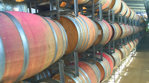 Barrels of wine in a Auckland winery
