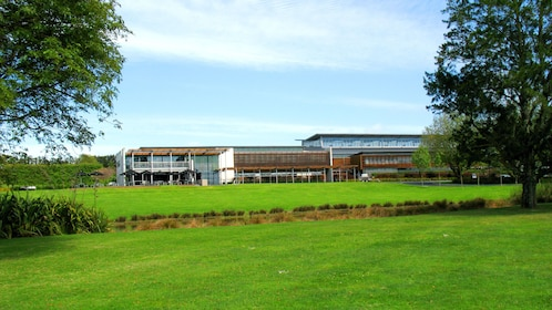 Winery in Auckland