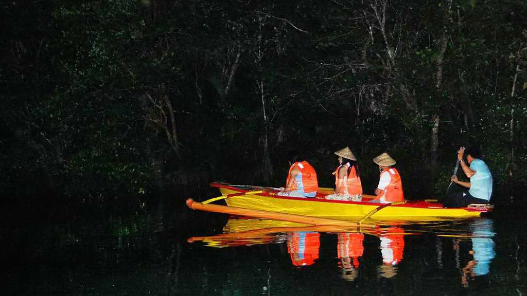 Night-time Firefly Watching Tour & Iwahig River Cruise
