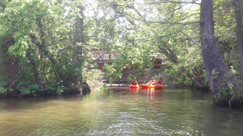 Kayakers paddle down river in Austin