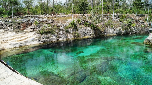 Clear waters of cenote in Tulum