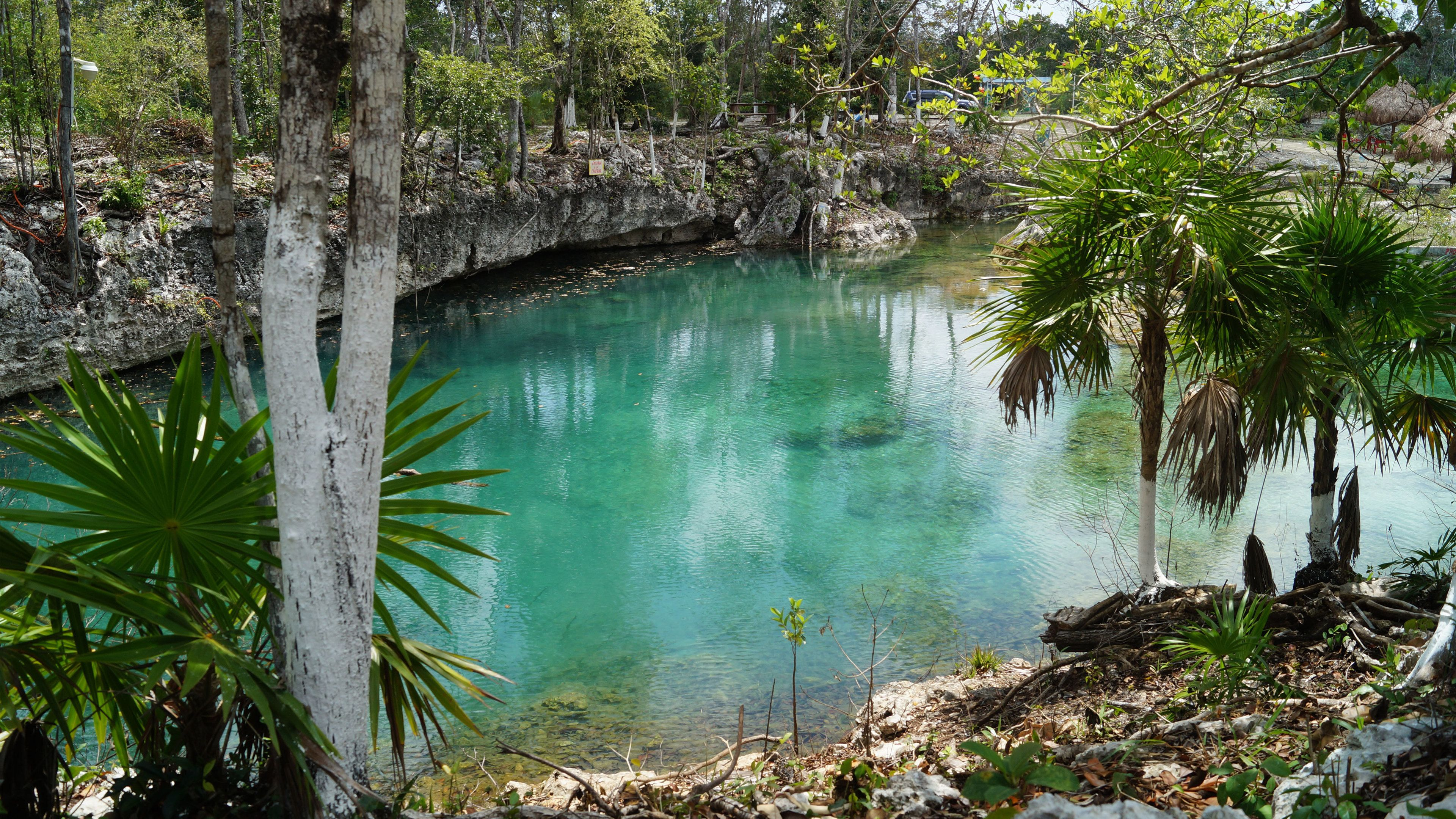 Clear water of a cenote in Mexico
