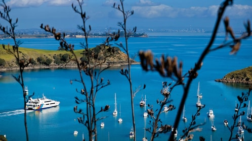 View of a boat on the water in Auckland