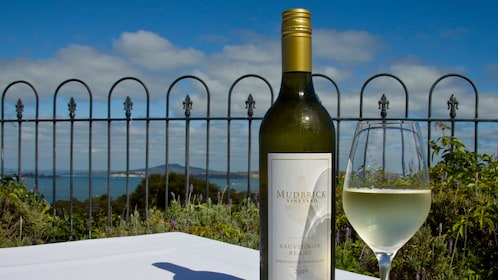 White wine with a view in Auckland