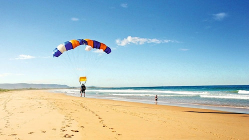 skydiver in parachute landing on the beach in Wollongong