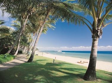 Beachfront Palms.jpg