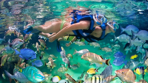 Snorkeling couple in Punta Cana